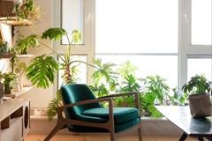 元气绿植+中古家具,打造「无国界风格」Home Office!
