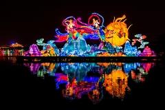 新春赏花灯,西安大唐芙蓉园成热门,游览如穿越千年!