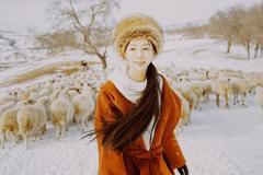 乌兰布统牧羊 摄影师 海螺壳