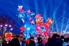 新春西安游究竟有多热?游客超二千万,接近韩国人口的一半!