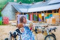 这个俄罗斯美女摄影师,为了100只狗狗隐居山中