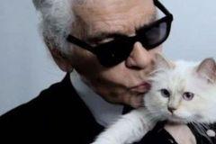 老佛爷去世,他的13亿遗产,是否留给自己的爱猫?