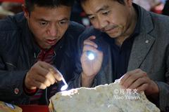 在中缅边境盛行的赌石买卖合法吗?多少人为之疯狂宁可倾家荡产