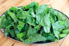 春天,多给孩子吃这菜,对眼睛特别好,一斤才5元,不懂吃就亏了!