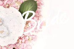 LOVEBOX 白色情人节特辑 | 献给春日的元气处方