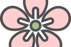 璀璨的春天——南方/杨和平双个展正在展出!