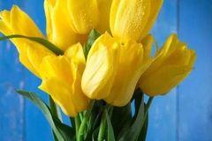 测试:你最喜欢哪一束花,测试你的晚年谁会在你身边照顾你!