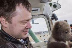 亲手养大的3岁熊bb被坏人骗走,俄罗斯飞行员气到哭:别怕,爸爸来了!