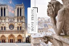 巴黎圣母院背后故事,是几个世纪的颠簸