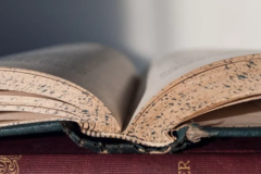 Essay代写机构分享literature review写作方法