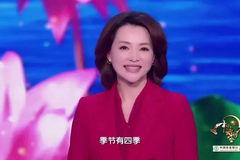 学习语文最好的方式就是:沉入式学习《中国诗词大会》!