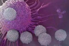 三分之一的癌症可预防,三分之一的癌症早期发现可根治