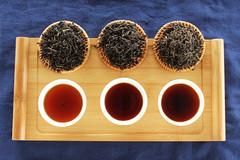爱上六堡茶,七个理由够不够?