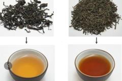 六堡茶传统工艺和现代工艺的碰撞