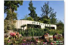 """当中国旅游日遇到""""520"""",就带她去竹博园......"""