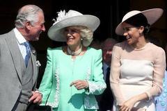 卡米拉对刚嫁入王室时的梅根凯特差距太大,戴妃凯特让她长记性!