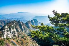 洛阳有座山和广州白云山重名,不过海拔更高,风景更美!