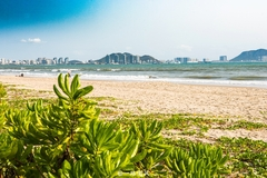 游最美海边椰林,住雅致民宿,三亚之行真完美!
