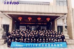 """肖晔:轻资产布局羊羊100,专注渠道""""下沉之王""""(三)"""