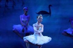 芭蕾盛宴 | 俄罗斯皇家芭蕾舞团经典芭蕾舞剧《天鹅湖》即将上演!