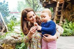 凯特徒手建造花园致敬戴妃 不惧梅根生子有威胁一家五口幸福哭了