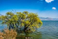 云南大理一大怪,明明是个湖却叫做海,沿岸风光旖旎不输欧洲!