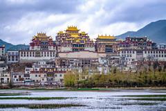 """这座高原寺院是云南最大藏传佛寺,庄严壮美,被称""""小布达拉宫"""""""