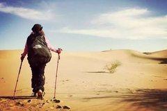 沙漠迷路为啥不能走直线?越直走越迷糊,应该这样走