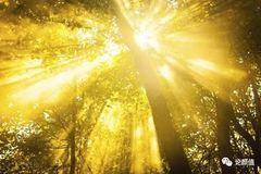 测试:你觉得哪束光让你心情变好?测你最近有什么好运要降临了