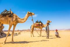 瓦迪拉姆:2000年前的沙漠圣地,至今远离城市文明