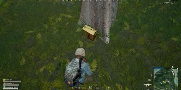 《绝地求生》出现BUG饰品:玩家卖了1万,但是官方根本没有发售!