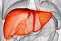 甲肝大流行已造成美密歇根州22人死亡,甲肝到底怎么防?