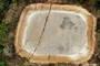 荆门石膏塌陷区:房屋倒塌3村民被压死,88岁老人路边搭帐篷睡