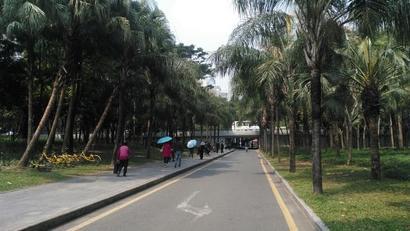 深圳岗厦地铁站附近实拍,带你们去看看啦