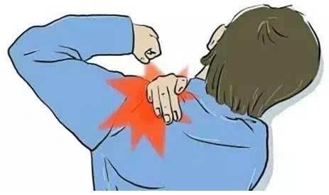 颈肩:天气明明很好,左肩,左手臂内侧却有阵阵酸痛,这有可能是冠心病.图片