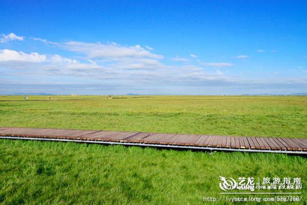 避暑玩乐去草原 盘点国内五大草原