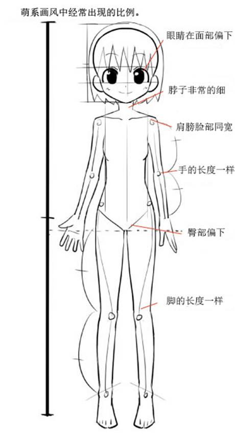 【画动漫人物教程】动漫人体比例怎么画?