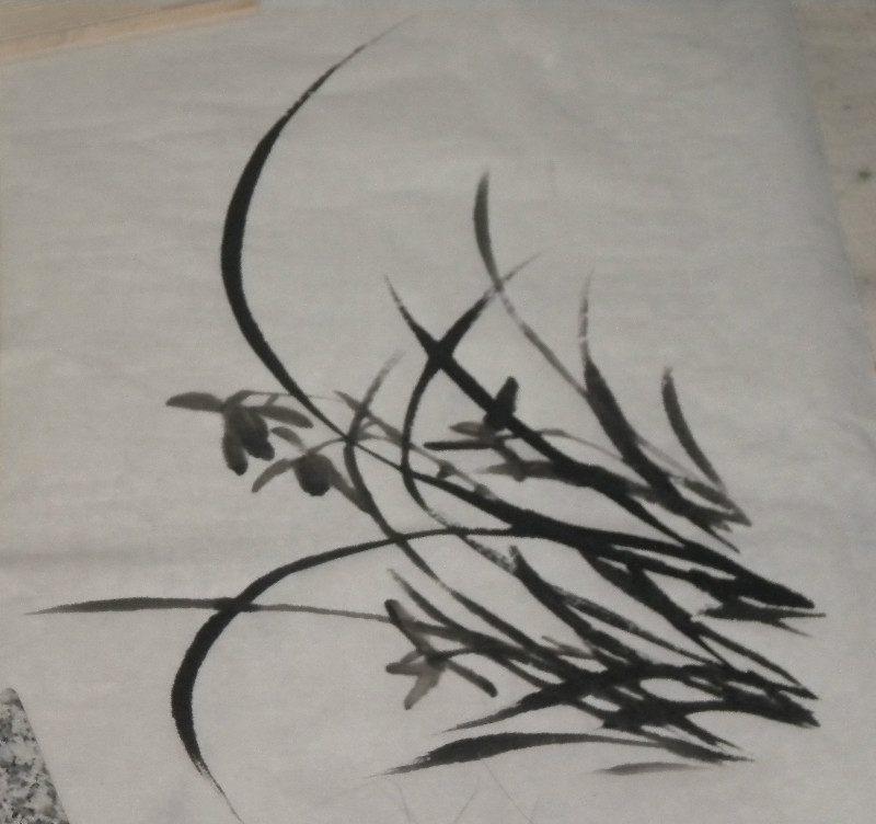 怎么画兰花 国画水墨画兰花步骤画法图文教程详解