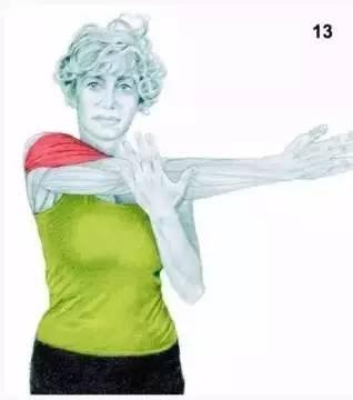 拉伸小腿的动作_34张肌肉拉伸图解,健身老司机教你做肌肉拉伸!
