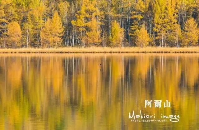 中国这座边塞小城,6月开始美景让人脸红心跳!