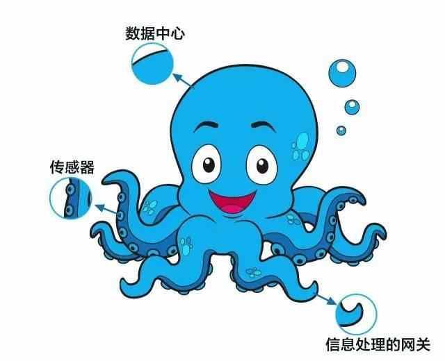如果我们把章鱼的触角上的吸盘看作是收集信息的传感器,而八只触手上