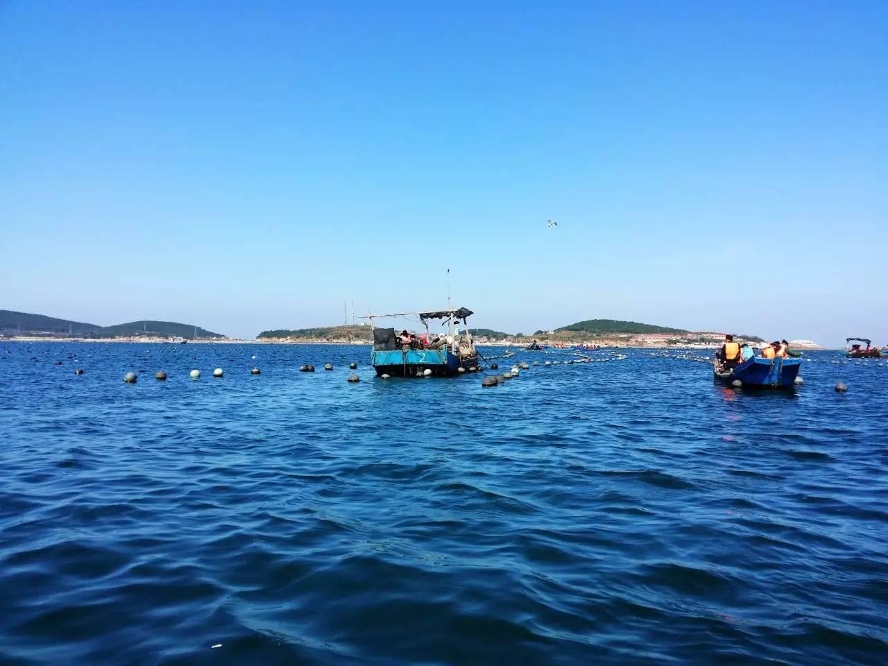 涨潮时在海边垂钓,退潮时赶海拾贝,抓螃蟹,捡海参;还可以入住当地
