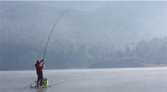 夏天钓鱼如何使用豆饼打窝更高效让鱼获翻倍