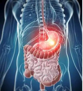 人体系统_科技| 干细胞与人体系统到底有什么关系?