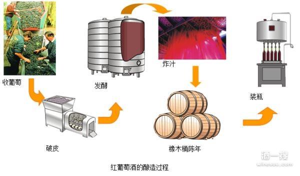 手绘红酒量制过程图