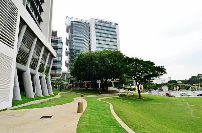 用高考成绩申请新加坡国立大学的要求
