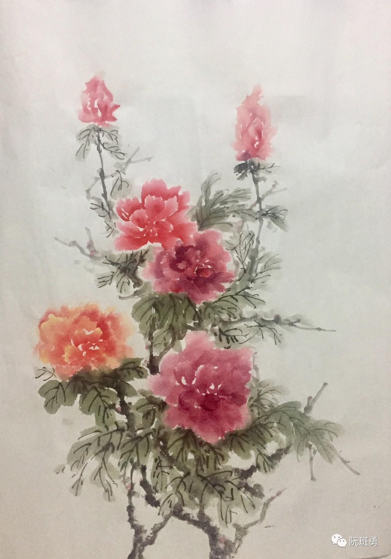 直播阮中华 阮班勇 的中国画之写意牡丹技法