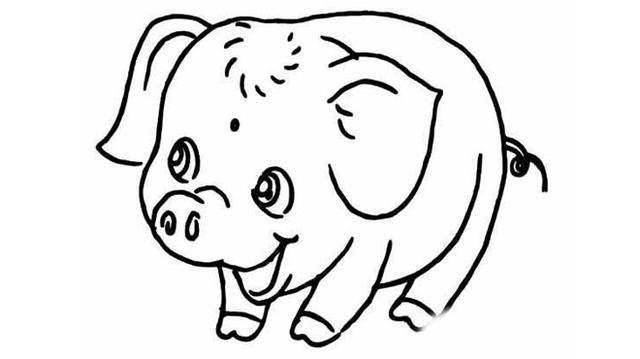出生在这几个月的属猪人,一生财运旺盛,福气满满