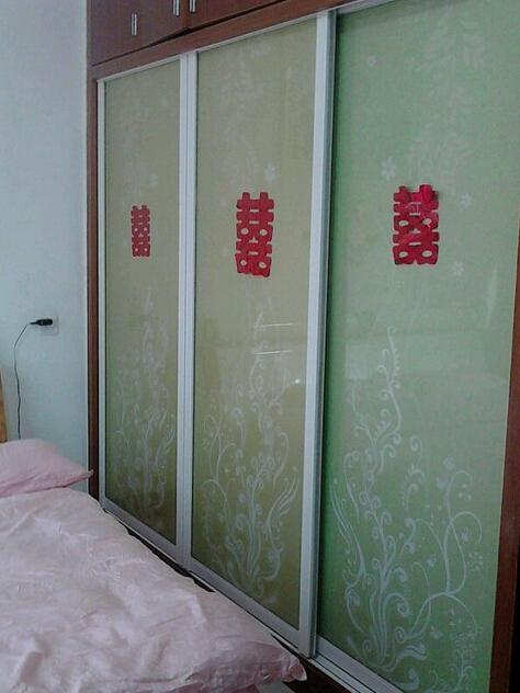 方法的蛋白,沉淀的步骤推拉门.tca玻璃使用卧室v方法衣柜图片