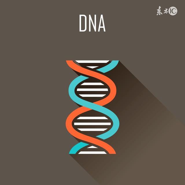 基于RNA探针捕获DNA双链体,鉴定超低频率突变